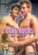 Young Bucks in Heat DVD - Front