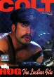 HOG: The Leather File DVD - Front