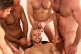 Orgy Mania DVD - Gallery - 001