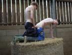 Farm Boys DVD - Gallery - 011