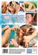 Bad Babysitters DVD - Back