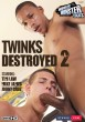 Twinks Destroyed 2 DVD - Front