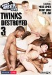 Twinks Destroyed 3 DVD - Front