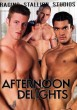 Afternoon Delights DVD - Front