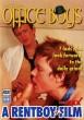 British Office Boys Barebacking DVD - Front