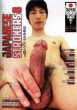 Japanese Strokers 8 DVD - Front