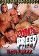 Pump & Breed DVD - Front