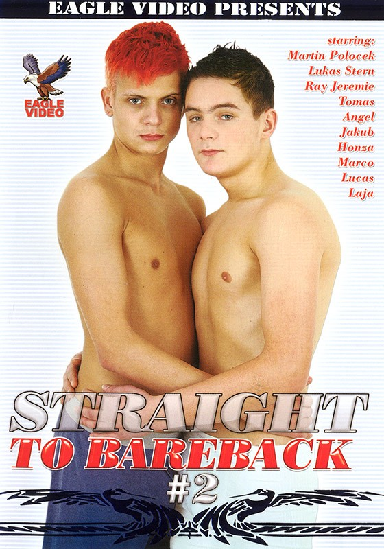 Straight to Bareback 2 DVD - Front