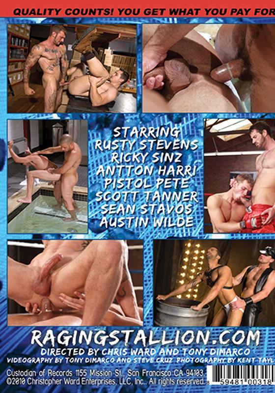 Wild Ride DVD - Back