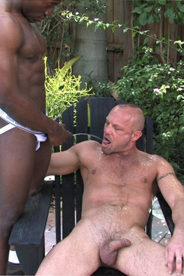 Wet Muscle Pigs DVD - Gallery - 001
