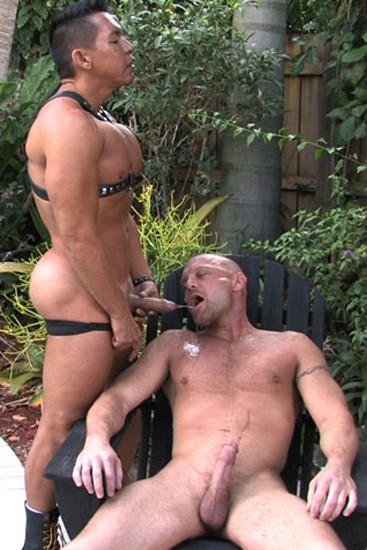 Wet Muscle Pigs DVD - Gallery - 003
