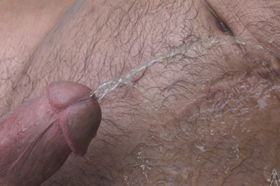 Wet Muscle Pigs DVD - Gallery - 008