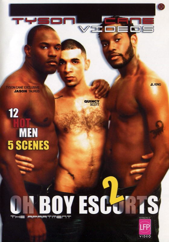 Oh Boy Escorts 2: The Apartment DVD - Front