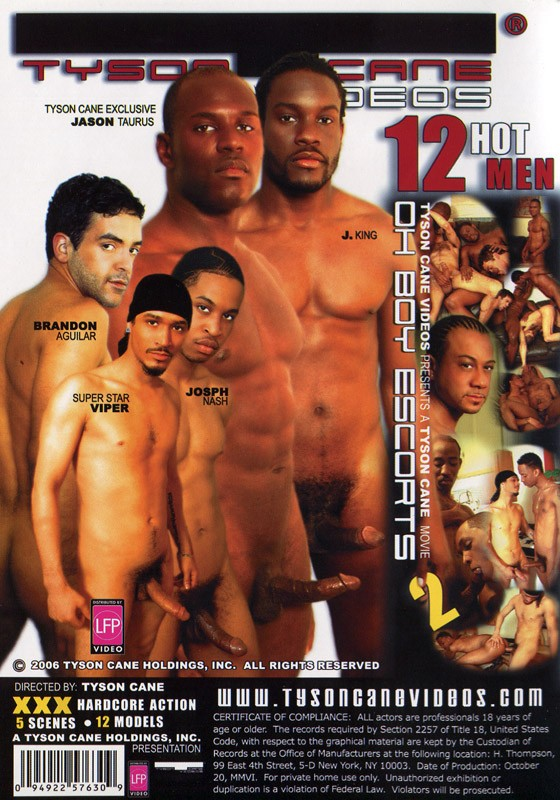 Oh Boy Escorts 2: The Apartment DVD - Back