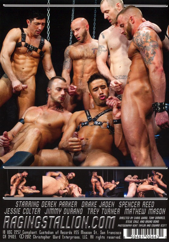 Fucked Up DVD - Back
