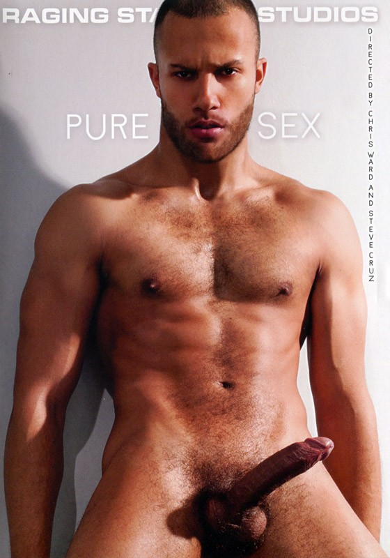 Pure Sex DVD - Front