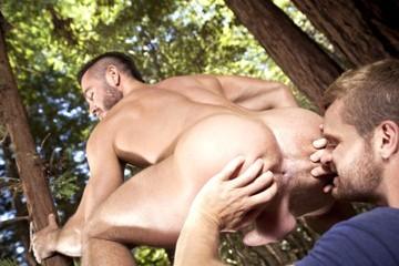 The Woods Part Two DVD - Gallery - 003