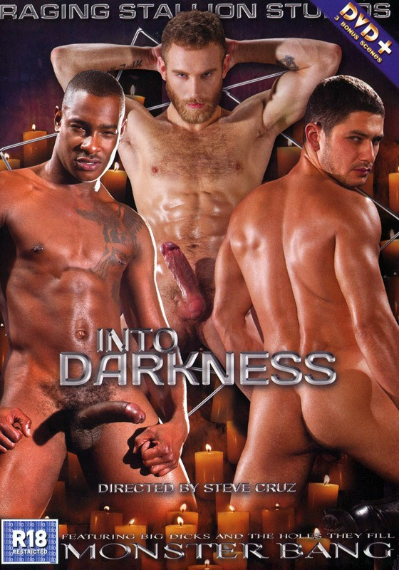 Into Darkness DVD - Front