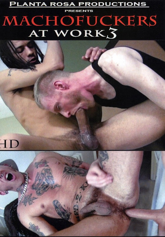 Machofuckers At Work 3 DVD - Front
