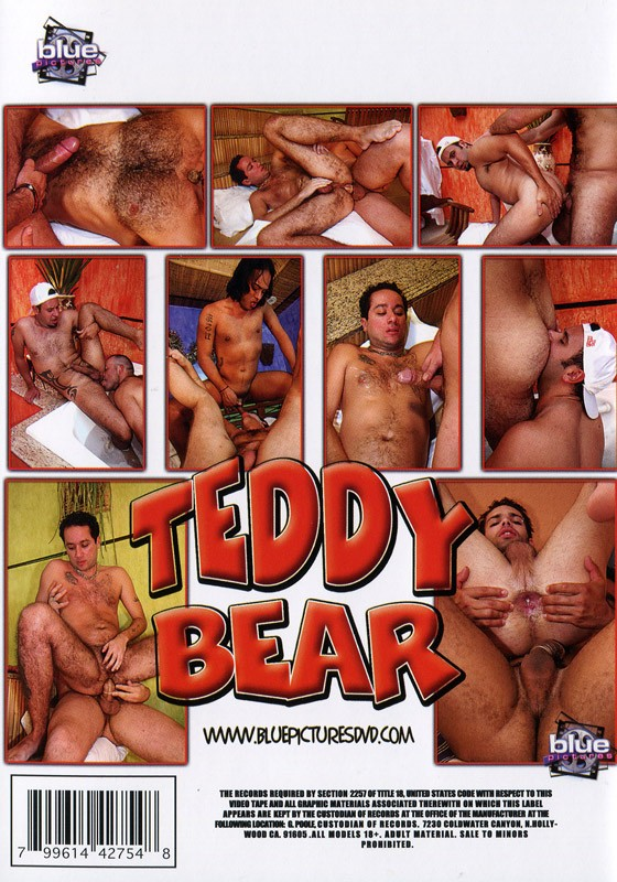 Teddy Bear (Blue Pictures) DVD - Back