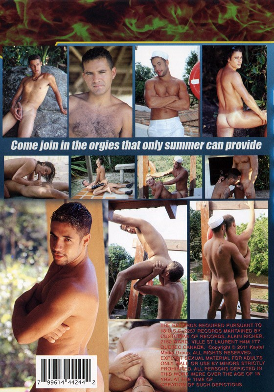 Wild Summer DVD - Back