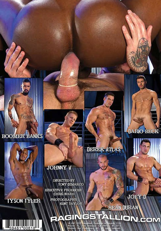 Fuck Hole (Raging Stallion) DVD - Back