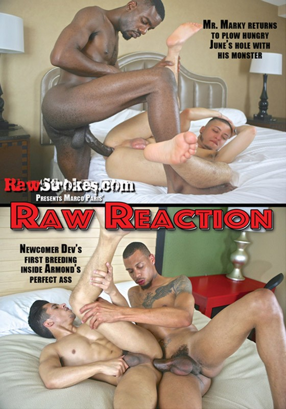 Raw Reaction DVD - Front