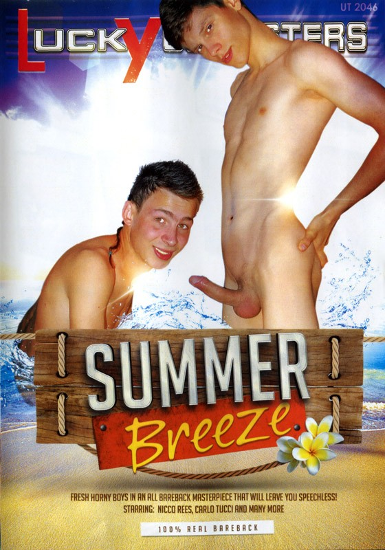Summer Breeze DVD - Front
