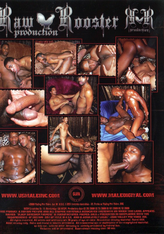 Black Bareback Fuckers DVD - Back