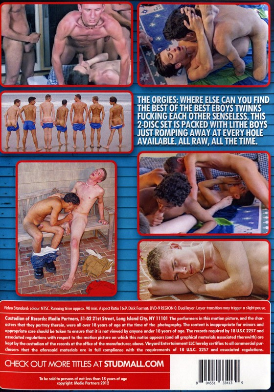 The Orgies Anthology DVD - Back