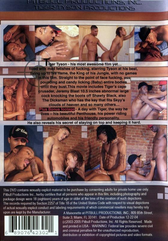 Tiger Tyson Strikes Back DVD - Back