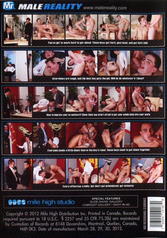 Office Twinks 6 DVD - Back