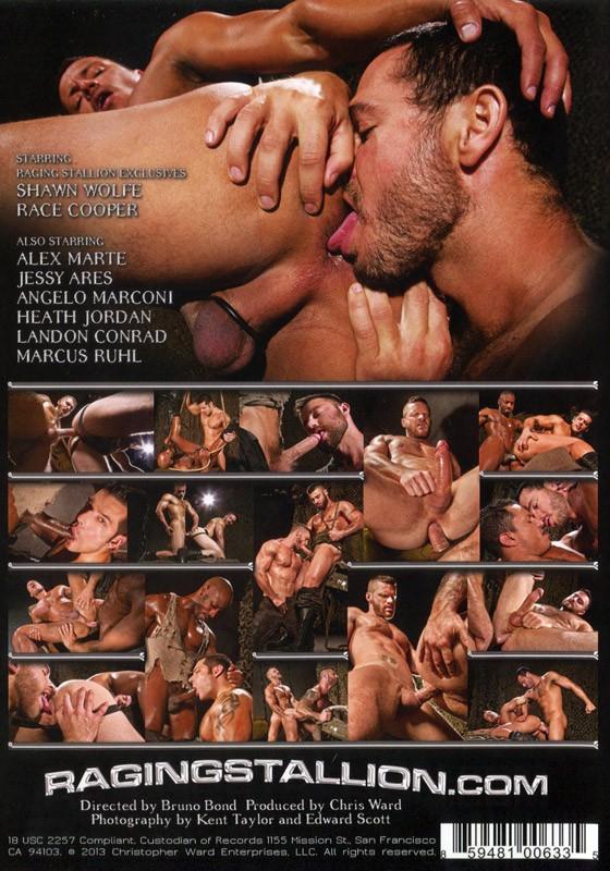 Militia DVD - Back