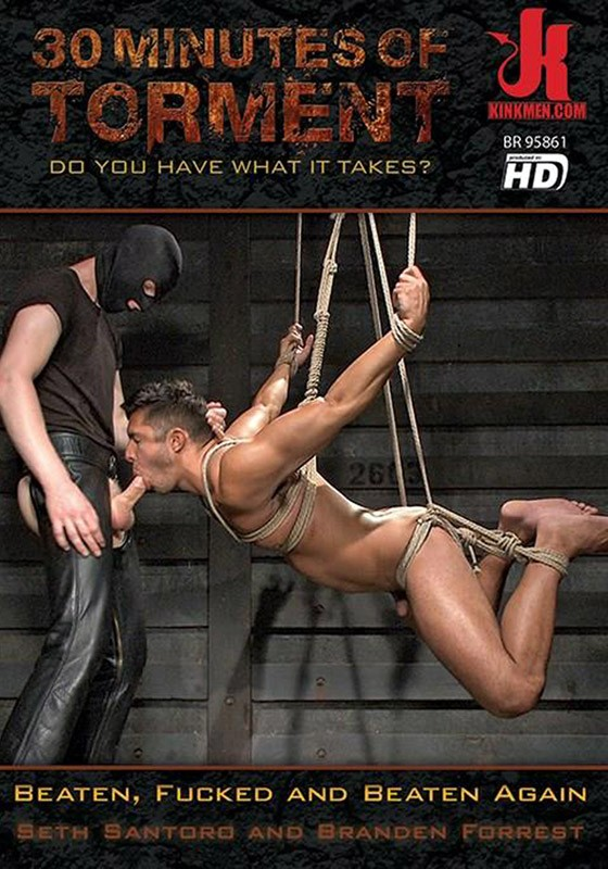 30 Minutes of Torment 25 DVD (S) - Front