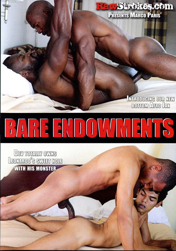 Bare Endowments DVD - Front