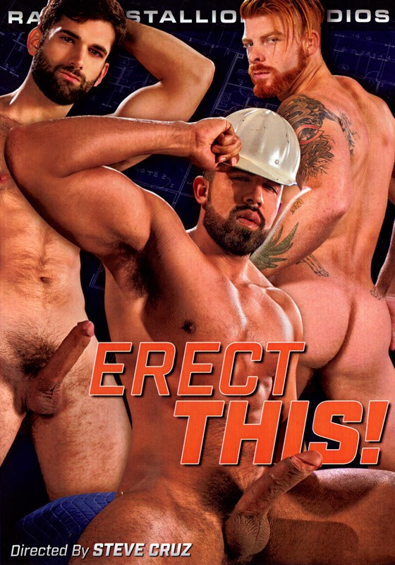 Erect This! DVD - Front