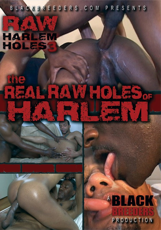 The Real Raw Holes of Harlem DVD - Front