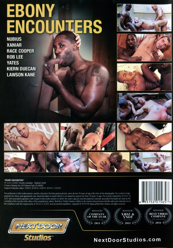 Ebony Encounters DVD - Back