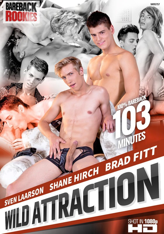 Wild Attraction DVD - Front