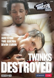 Twinks Destroyed DVD - Front