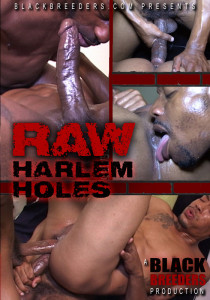 Raw Harlem Holes DVD - Front