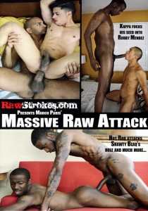 Massive Raw Attack DVD (S)