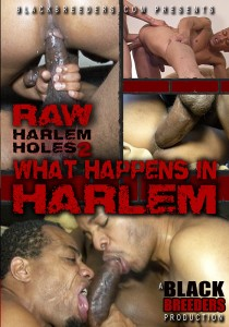 Raw Harlem Holes 2: What Happens in Harlem DVD