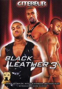 Black Leather 3 DVD (S)