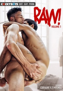 Raw! volume 1 DVD (S)