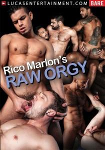 Rico Marlon's Raw Orgy DVD (S)