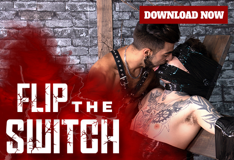 Flip The Switch DOWNLOAD!